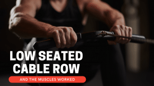 How do you do a low seated cable row and muscles worked