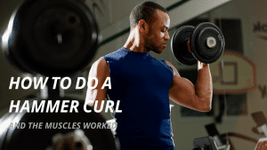 How to do a proper hammer curl and the muscles worked