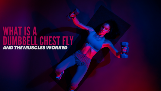 What is a dumbbell chest fly and the muscles it works